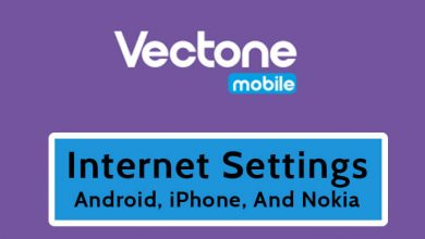 Vectone Internet Settings