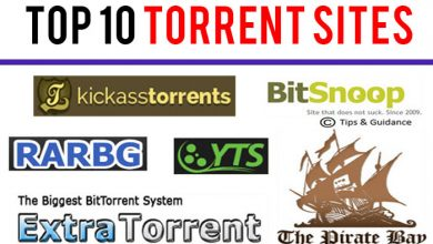 Top 10 Torrent Sites