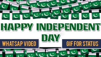 Happy Independent Day – WhatsApp Video & GIFs For Status