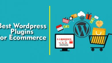 Top 5 Best WordPress Plugins For eCommerce Stores